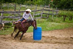 Projectos científicos sobre passeios a cavalo e física
