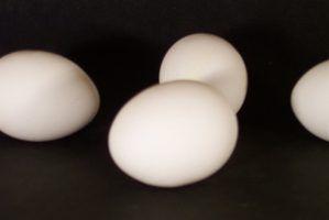 Seis fatores que afetam a espuma branca do ovo