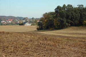 Quais são os perigos de fertilizantes para os seres humanos?