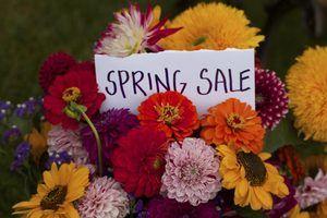 Idéias de publicidade primavera