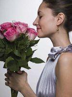 Recebendo flores como um presente é um potenciador de humor natural.