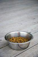 Os melhores alimentos de cão para um grande pirineus