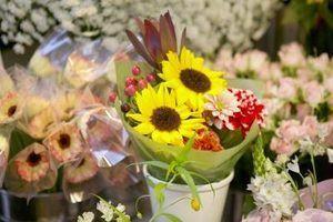 As melhores lojas de flores