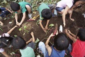 Os melhores solos envasamento para uma horta