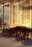 Os melhores janelas da recolocação para comprar para climas frios