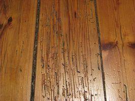 As causas das lacunas piso de madeira