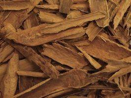 As diferenças entre óleo essencial de casca de canela e folha de canela óleo essencial