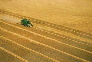 As desvantagens da agricultura entrada de alta