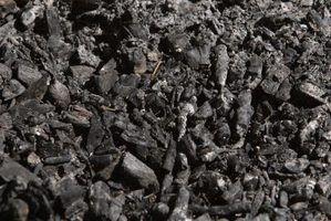 Utilizações tópicas de carvão activado