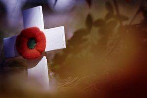 Perguntas triviais sobre o memorial day