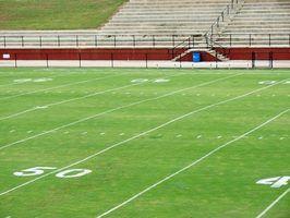 Tipos de grama usados em campos de futebol locais