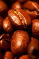 As plantas de café pode ser afetada por doenças protozoários.