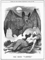 Fatos de morcegos hematófagos para crianças