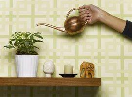 Bolas de água para as plantas