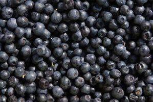O que são super frutas?