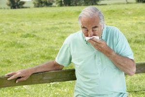 Quais são as causas de estalos nos pulmões?