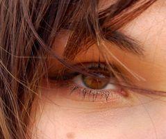 Quais são as funções de hastes e cones no olho?
