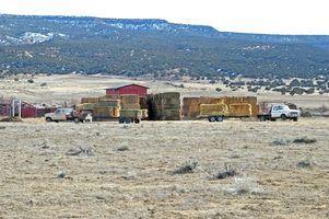 Quais são os requisitos para registrar um caminhão fazenda no texas?