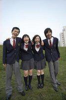 Quais são as cores padrão uniforme escolar?