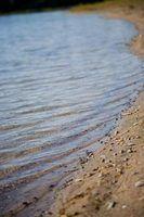 Quais são os tipos de solo em biomas de água doce?
