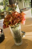 O que eu posso fazer com meus velhos rosas que se secaram?