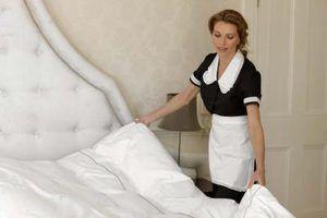 O que é um ganso comforter alternativa?