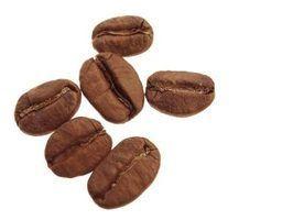 Qual é a diferença entre o café arábica e columbian?