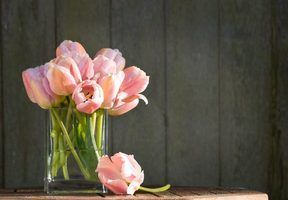 O que fazer com tulipas caídas