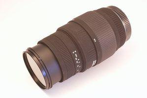 Qual câmera dslr lente para aves e animais selvagens?