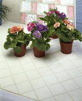 Que houseplants crescer bem sob luzes fluorescentes?