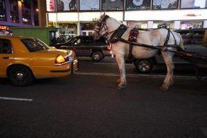 Por que cavalos usados para puxar carroças usar antolhos?